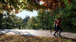 Running in the Park